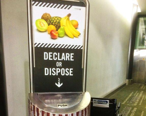 Declare of dispose