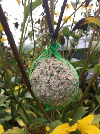 Vetbol in een net. Vogels raken er soms in verstrikt.